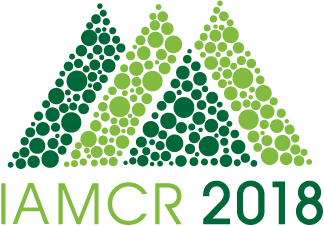 Reimagining Sustainability - IAMCR 2018